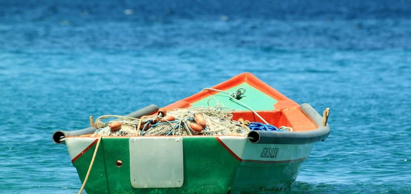 Ministarstvo poljoprivrede – Uprava ribarstva organizira sastanak s predstavnicima autoriziranih plivarica