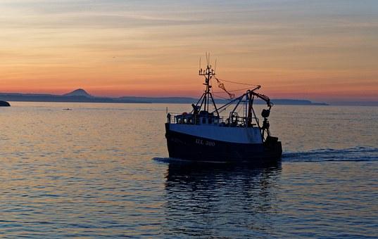 """Obavijest o održavanju radionica """"Unos statističkih podataka o akvakulturi u informacijski sustav uprave ribarstva"""""""