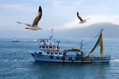 Partnerski odnos Lučke uprave Rijeka i riječkih ribara sve snažniji