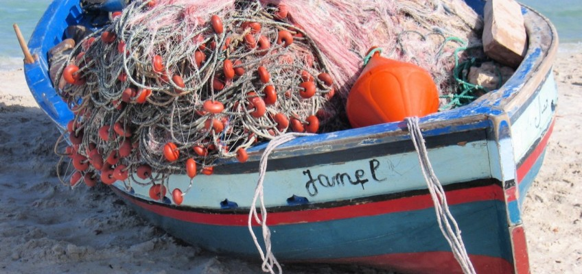 Pravilnik o dozvoli za akvakulturu i Pravilnik o malom obalnom gospodarstvu stupili su na snagu